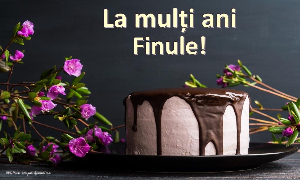 Felicitari frumoase de zi de nastere pentru Fin | La mulți ani finule!
