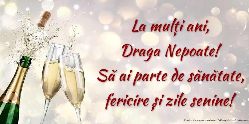 Felicitari frumoase de zi de nastere pentru Nepot   La mulți ani, draga nepoate! Să ai parte de sănătate, fericire și zile senine!