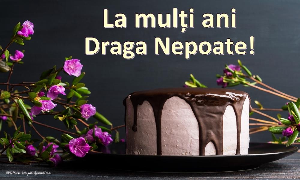 Felicitari frumoase de zi de nastere pentru Nepot   La mulți ani draga nepoate!