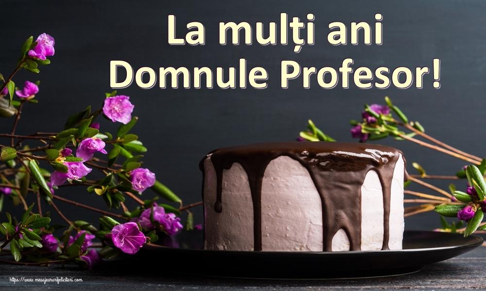 Felicitari frumoase de zi de nastere pentru Profesor | La mulți ani domnule profesor!