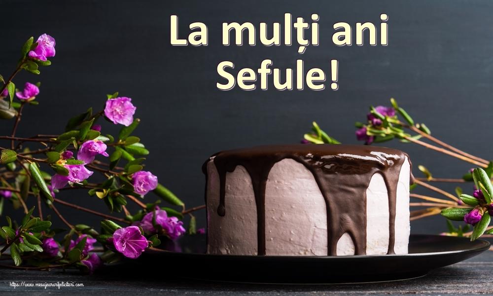 Felicitari frumoase de zi de nastere pentru Sef | La mulți ani sefule!