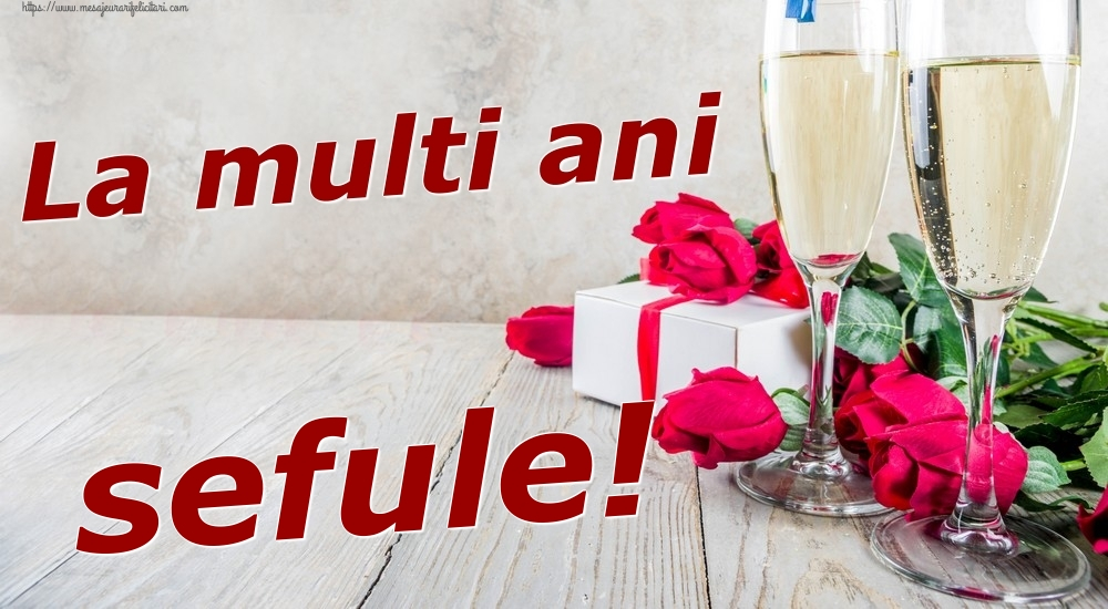 Felicitari frumoase de zi de nastere pentru Sef | La multi ani sefule!