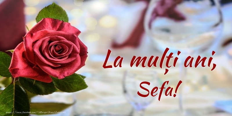 Felicitari frumoase de zi de nastere pentru Sefa | La mulți ani, sefa!