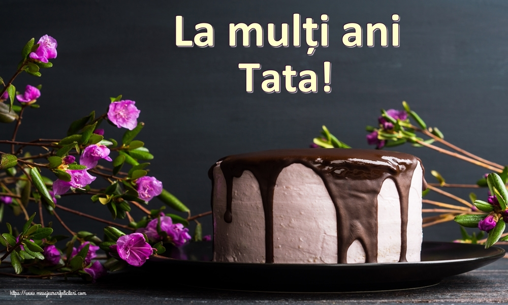 Felicitari frumoase de zi de nastere pentru Tata   La mulți ani tata!