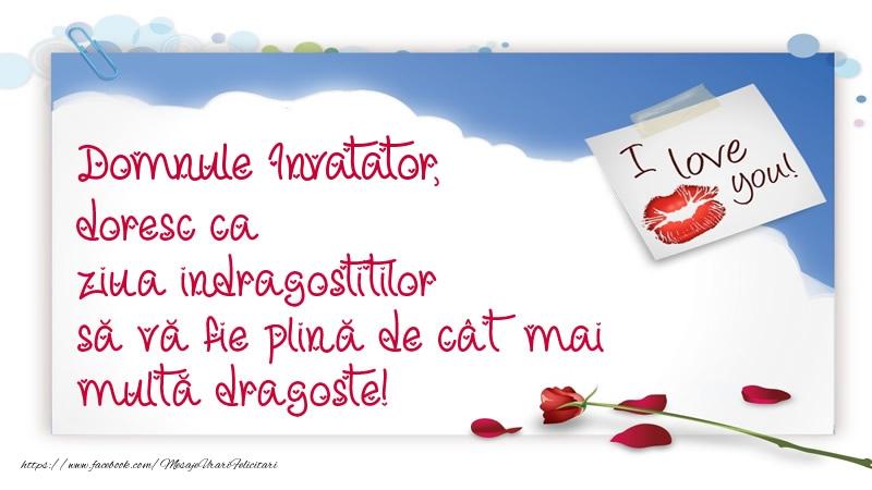 Felicitari frumoase de Ziua indragostitilor pentru Invatator | Domnule invatator, doresc ca ziua indragostitilor să vă fie plină de cât mai multă dragoste!